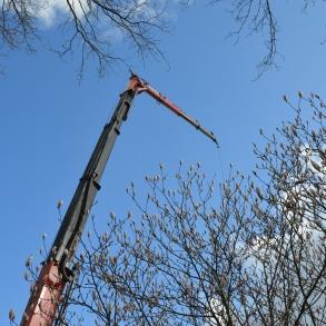 Referenzbild #5 für Holzrahmenbau in Oldenburg/Wiefelstede